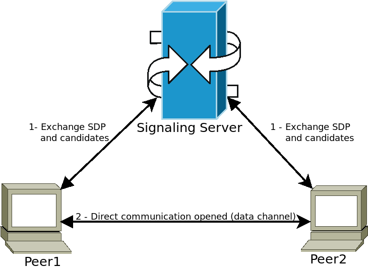 signaling_simple.png