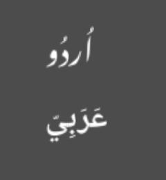 Screenshot of Arabic scripts